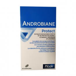 Androbiane Protect 60 Capsules Pileje