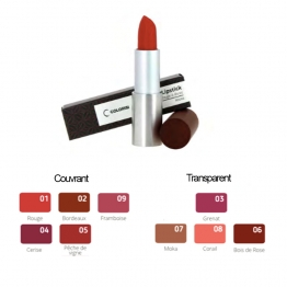 COLORISI ROUGE A LEVRES 3,5g