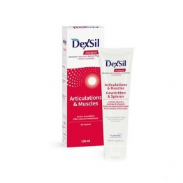DEXSIL GEL ARTICULATIONS ET MUSCLES INSTANT 100ML