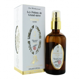 DIETWORLD ASSAINISSANT D'AIR POTIONS DE GRAND MERE 100ML