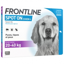FRONTLINE SPOT-ON CHIEN L 20-40KG 4 PIPETTES DE 2.68ML