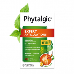Expert Articulations 90 capsules Phytalic Nutreov