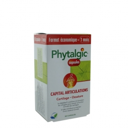 PHYTEA PHYTALGIC CAPITAL ARTICULATIONS 90 CAPSULES
