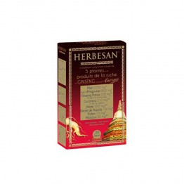HERBESAN GINSENG PERFORMANCE 20x15 ML