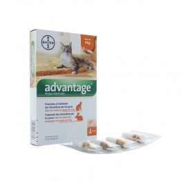 ADVANTAGE SOLUTION POUR SPOT-ON CHAT MOINS DE 4 KG